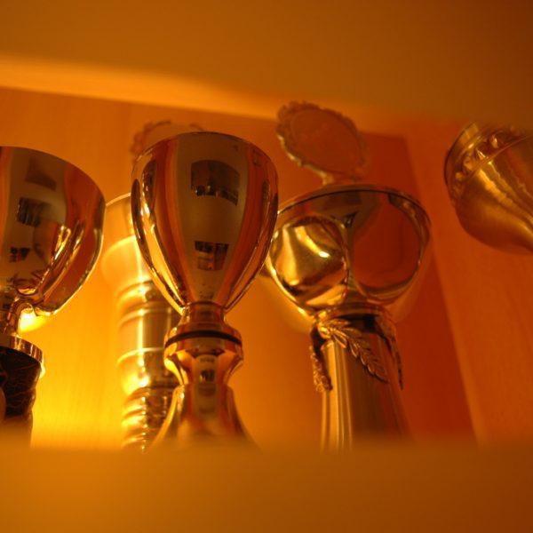 Gleich mehrere Awards als Lorbeeren und Früchte unserer Arbeit